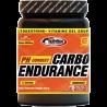 CARBO ENDURANCE PH CORRECT 520G